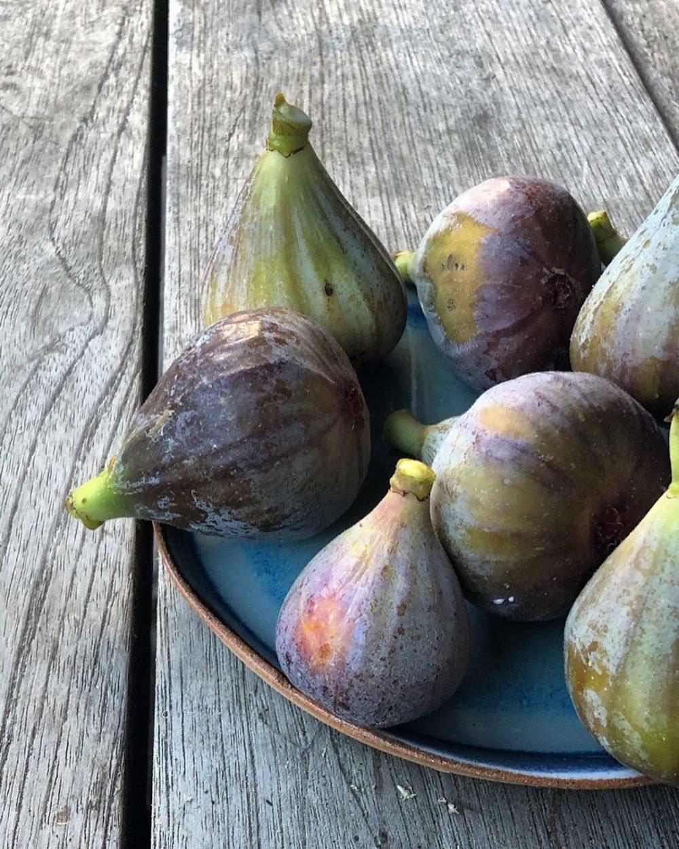 Figs weird aphrodisiacs