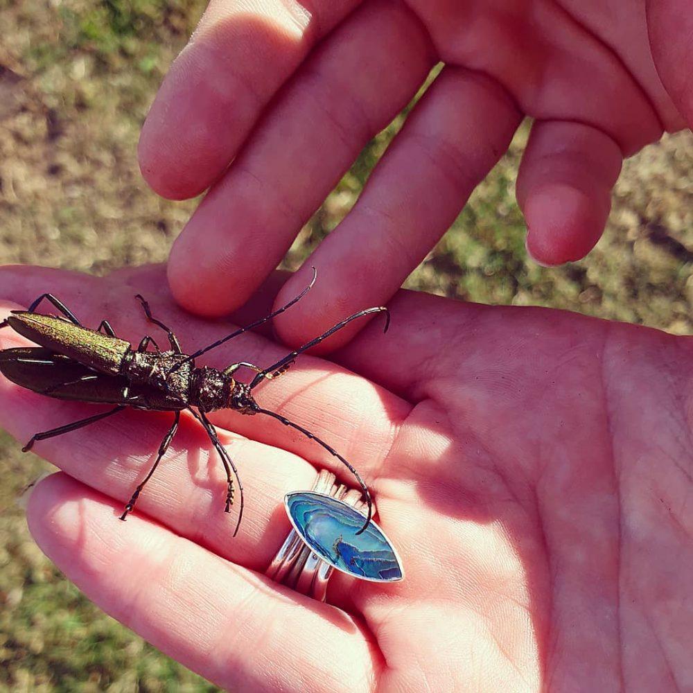 Spanish Fly weird aphrodisiacs